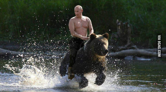 Vladimir Putin's personal bear