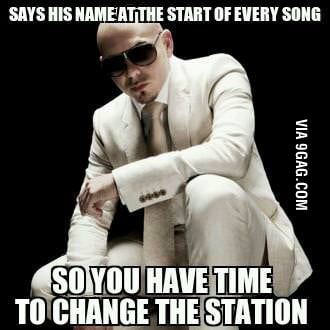 Good Guy Pitbull