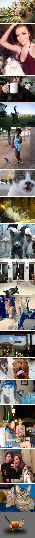 16 Times Asshole Cats Hilariously Photobombed Purrfect Shots