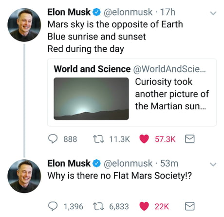 "Elon ""Savage"" Musk"