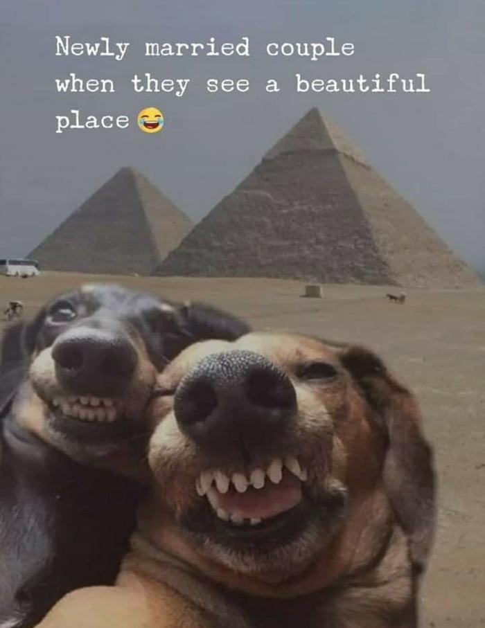 Let's take a selfie.
