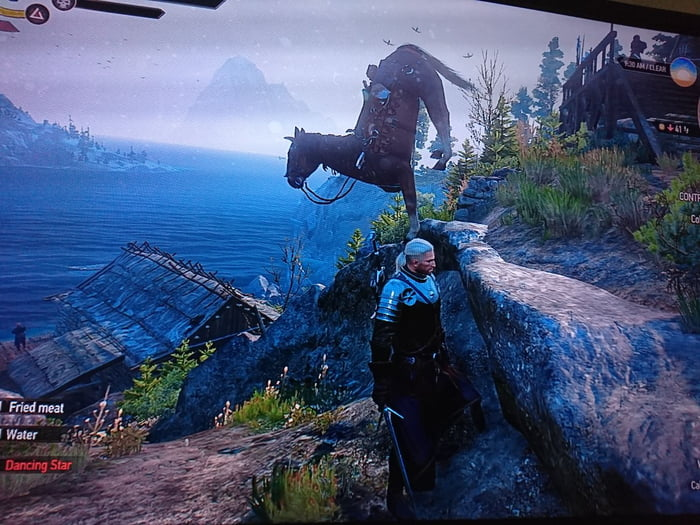 My horse can do yoga.