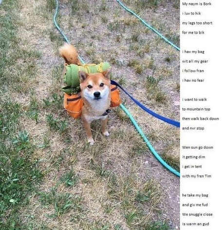 """I luv to hik"" a pom by bork"