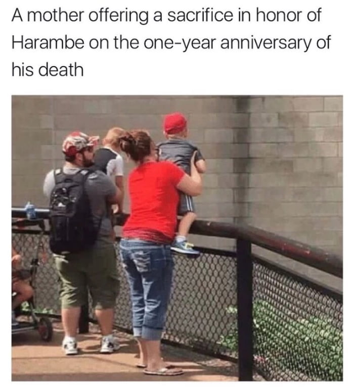 Harambe our saviour