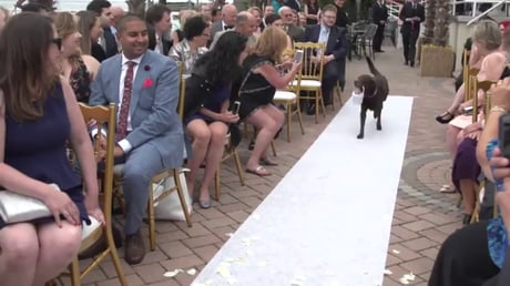 Video: Happiest Flower Girl ... and Goodest!