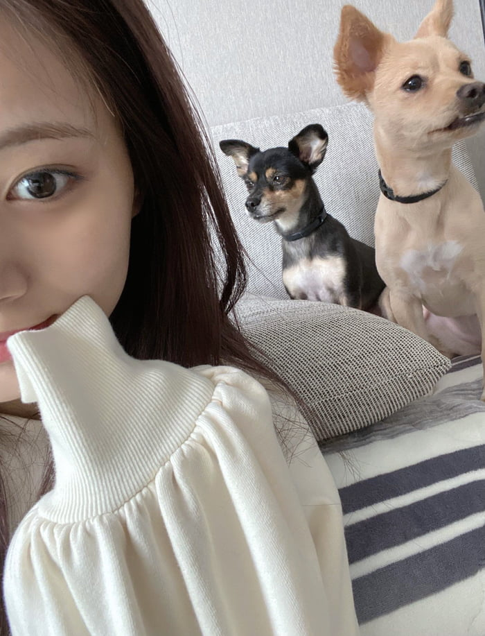 Photo : Tzuyu and her dogs