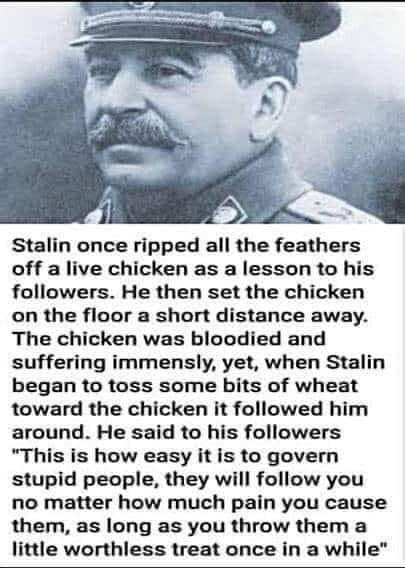 The fun part you know and dont care, you all believe to be Stalin but you are the chicken