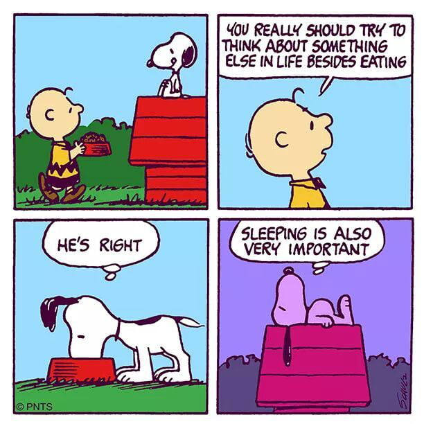 Oh Snoopy you understand me