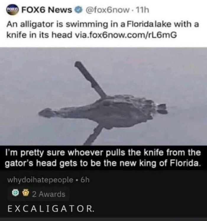 Excaligator, Legendary Gator-Sword Hybrid Of Florida