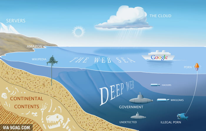 The Web Sea