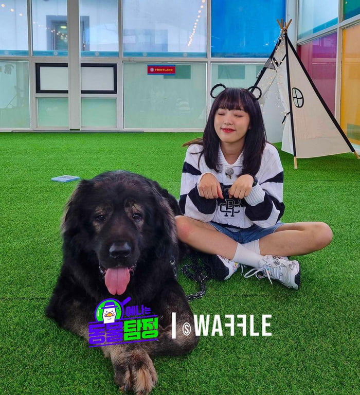Photo : 211005 Studio Waffle Instagram Update with Choi Yena