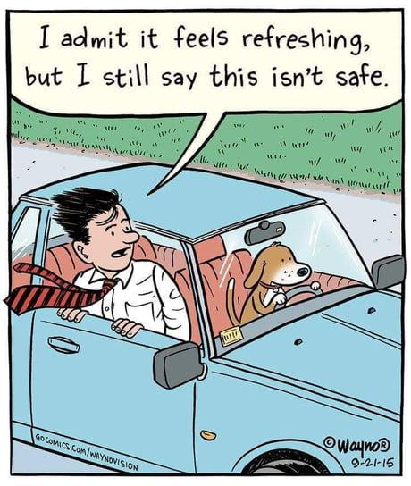 Nuff safe