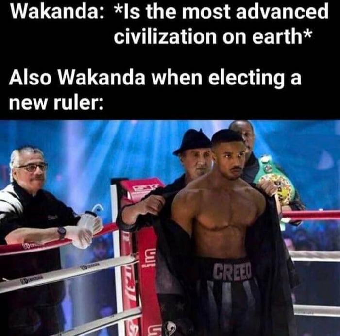 Wakanda shit is This ?