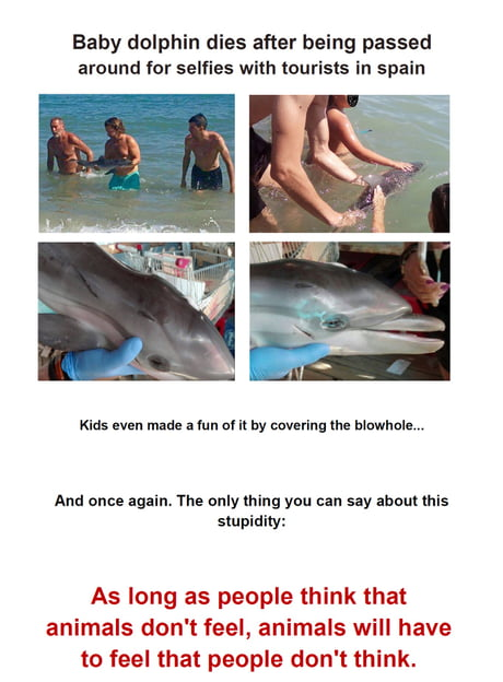 Stupidity at it's best... faith in humanity is lost over and over again :(