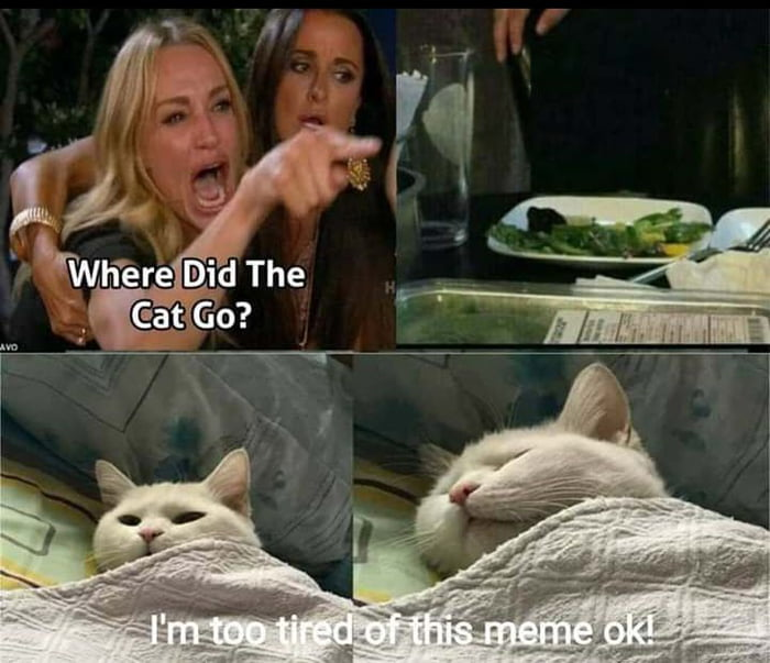 Memes at 10pm