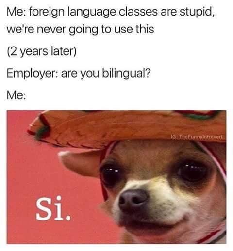 ¡Si, yo hablo your languago!