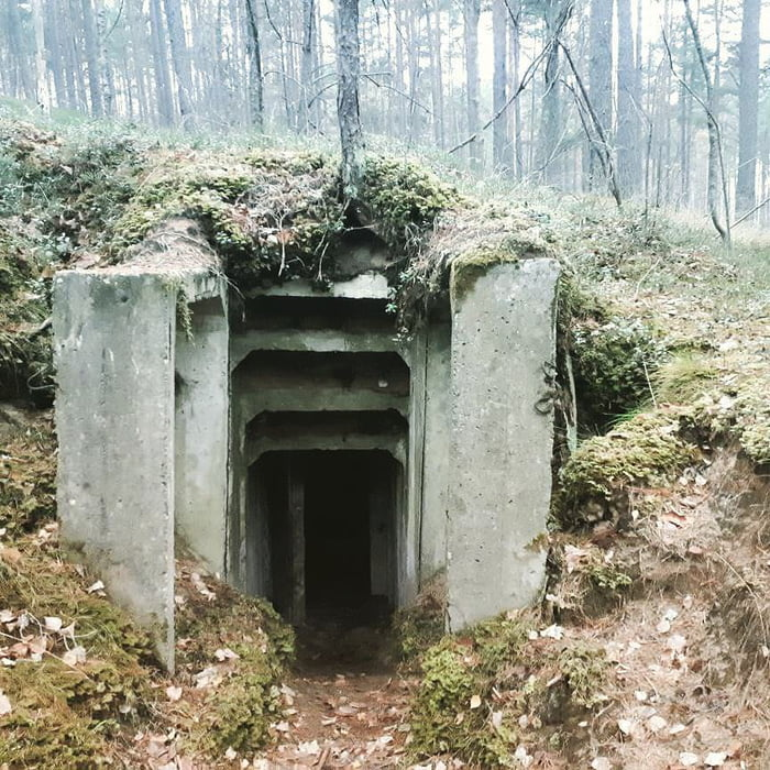 Found old Soviet bunkers in the woods.