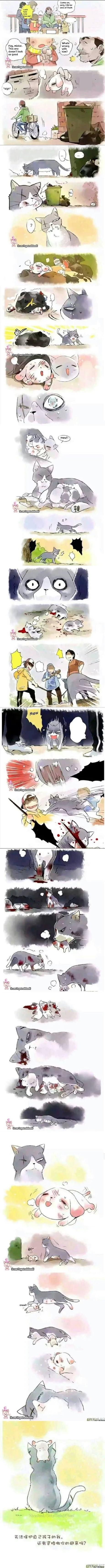 Comics Its that ninjas cutting onions time