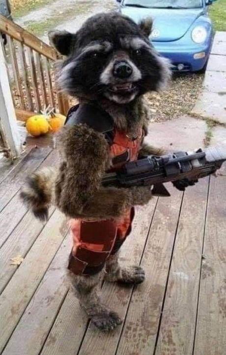 Amazing costume 1