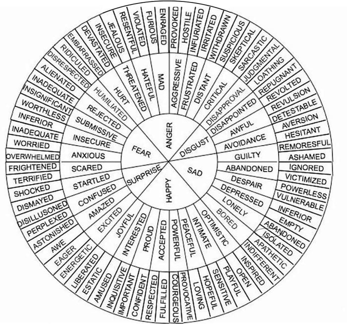 Vocabulary Wheel for describing emotions