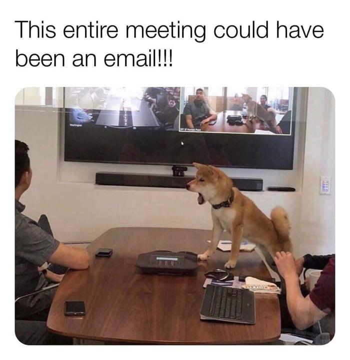 I can feel the doggo's frustration