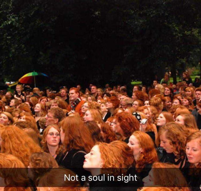 Wheres Weasley?