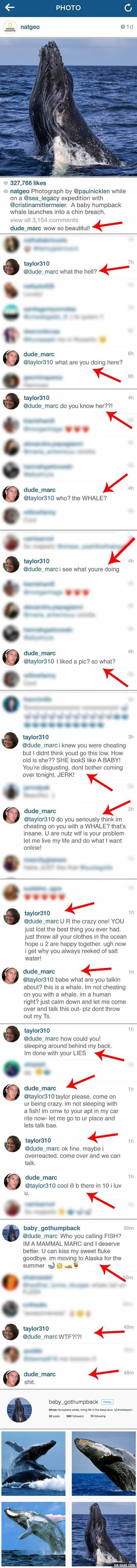 """You're cheating on me with a whale?!"" Girl exposes her boyfriend's sidechick on Instagram"