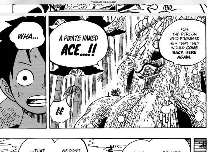 One Piece chapter 911 is out