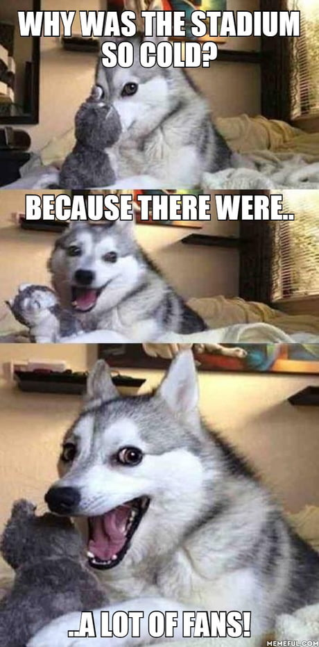 Such pun, much wow