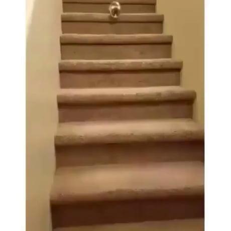 HALP how do I stairs?