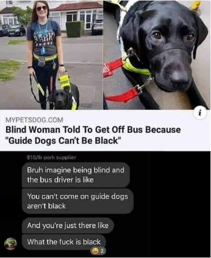 Black dog can't be a guide
