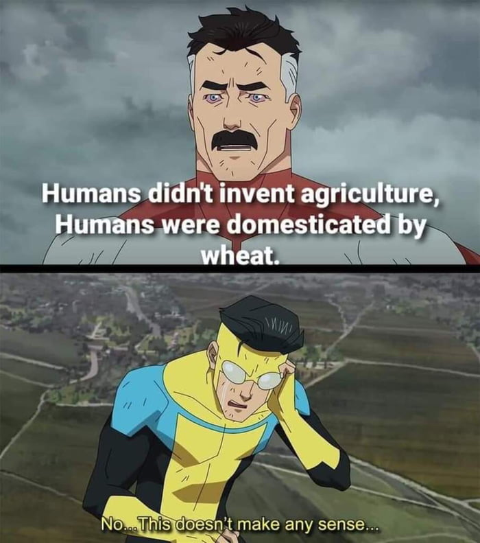 Think about it. Wheat is the most successful plant in the world.