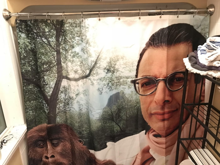 She let her boyfriend choose a shower curtain and now they have this