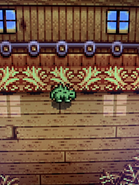 I Was Today Years Old When I Found Out You Can Hatch Dino Eggs On Stardew Valley To Get This Little Guy 9gag You can put a dinosaur egg or two in a chest somewhere you won't accidentally sell them, then sell all your dinosaurs. 9gag