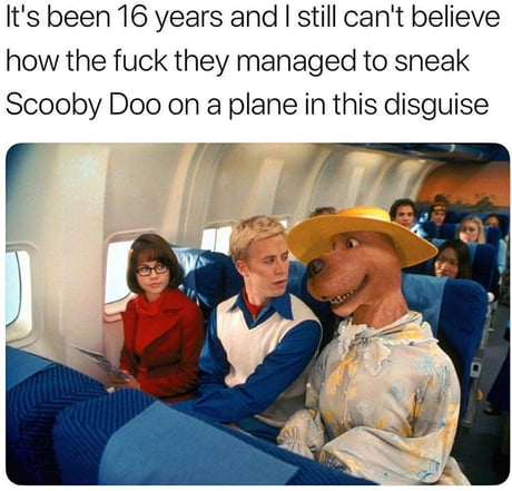 Just Scooby Dooby do it