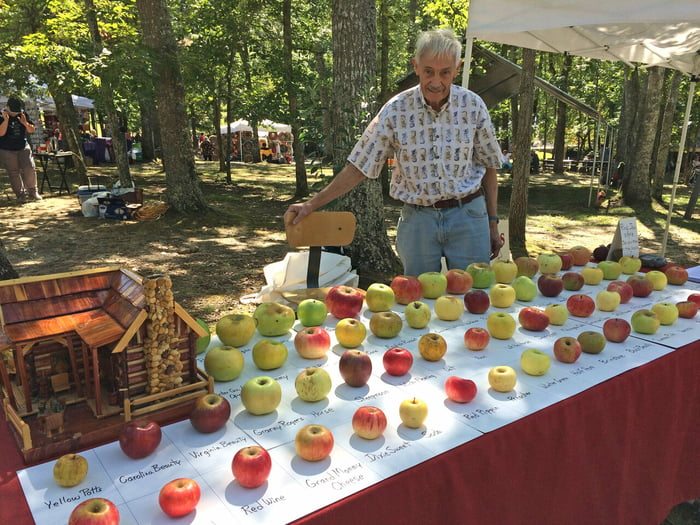 Tom Brown, retired engineer, has saved around 1,200 types of apples from extinction over 25 years.