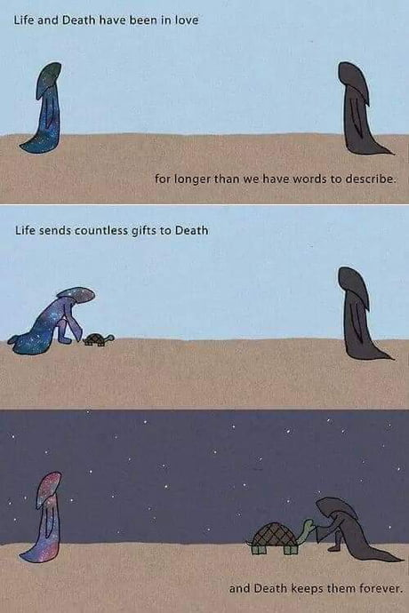 Gifts of life ! 1
