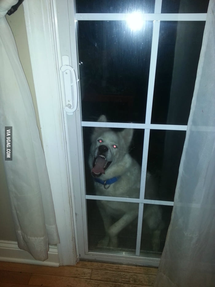 He looks like a demon when he wants inside.