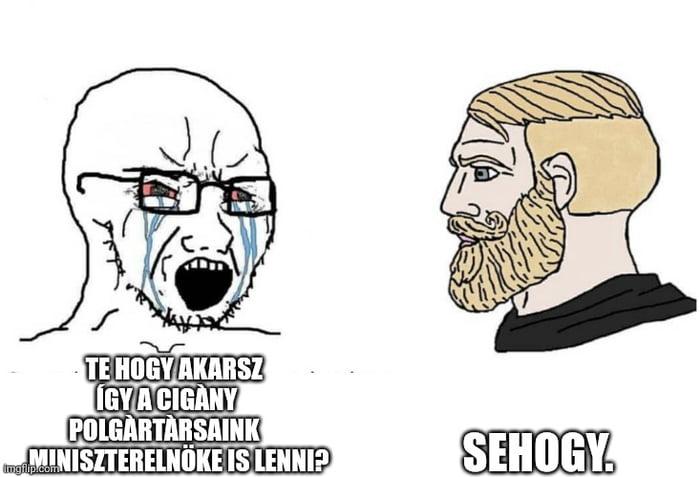CHAD Toroczkai László