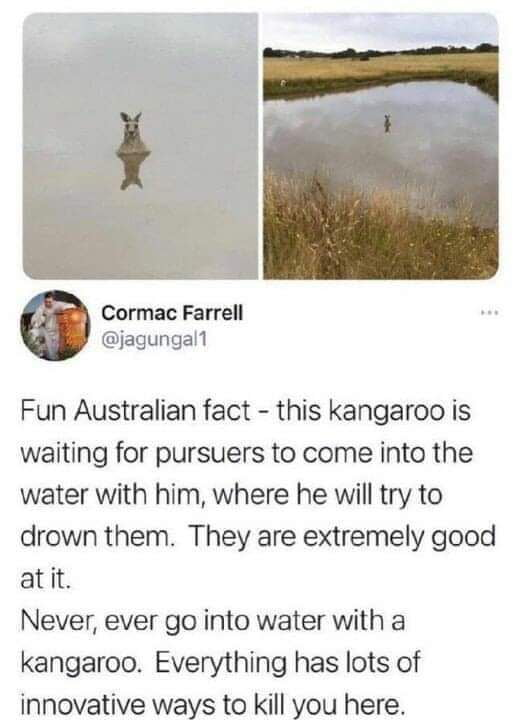 As an Australian, I can confirm