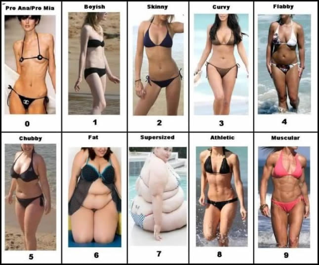 What body type do you like on a girl?