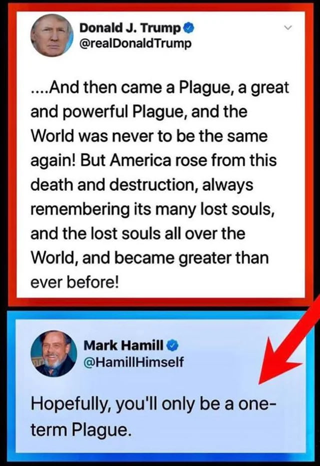 The Orange Plague Of Idiots