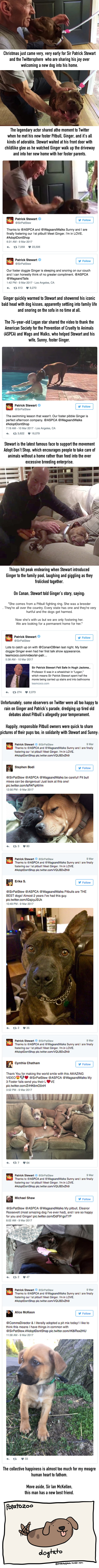 Patrick Stewart Adopted A Pitbull And Their First Meeting Is Amazing