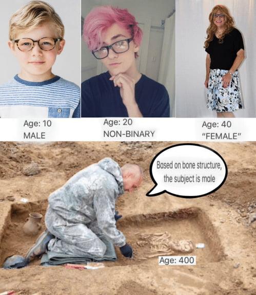 Gender evolution