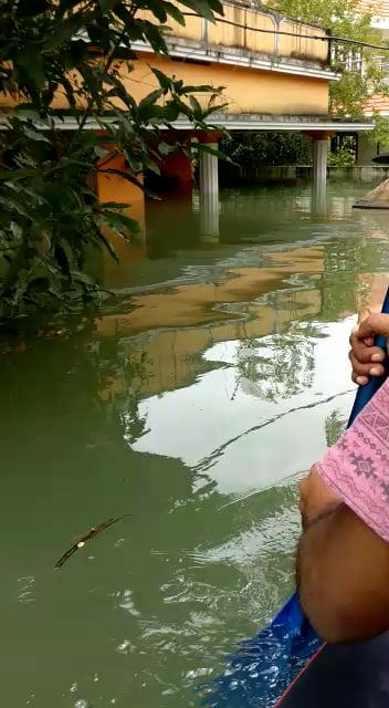 Help Kerala - Video | Gif-Vif