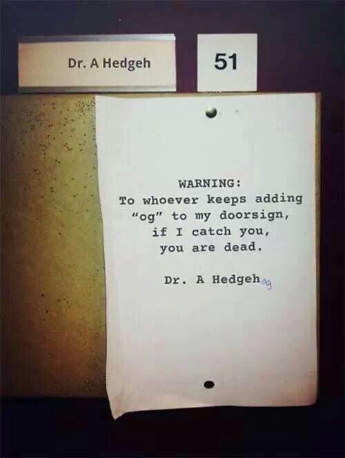 Dr. A Hedgehog