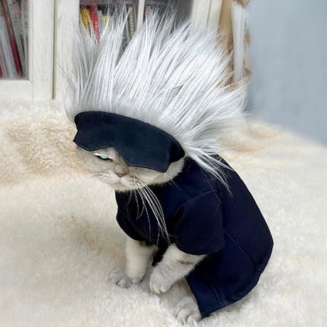 The OG gojo cat from twitter.