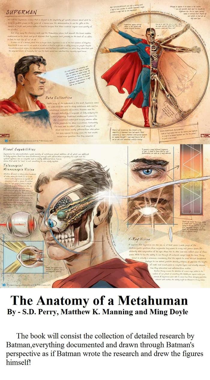 The Anatomy of a Metahuman