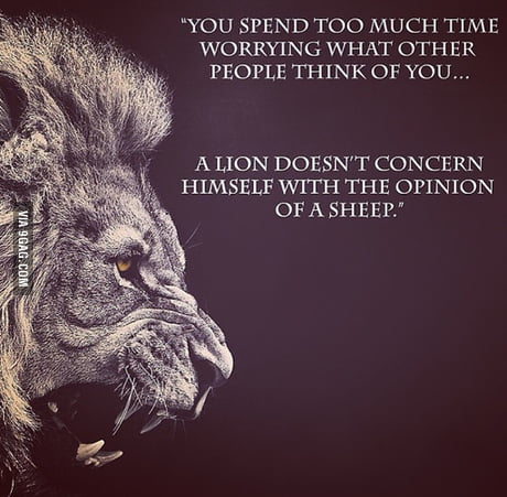 I am a lion, not a sheep.