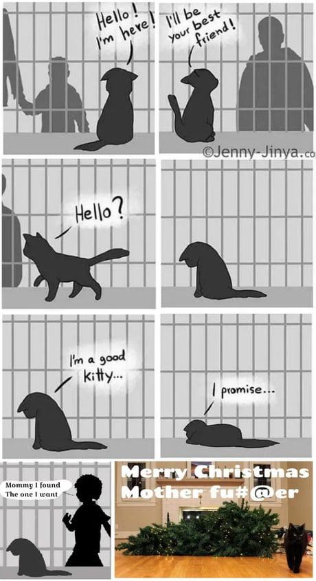 Mačka - Stránka 6 An4AdNq_460s